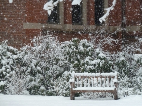 A snowy bench waits silently in the Jefferson Market Library Garden.