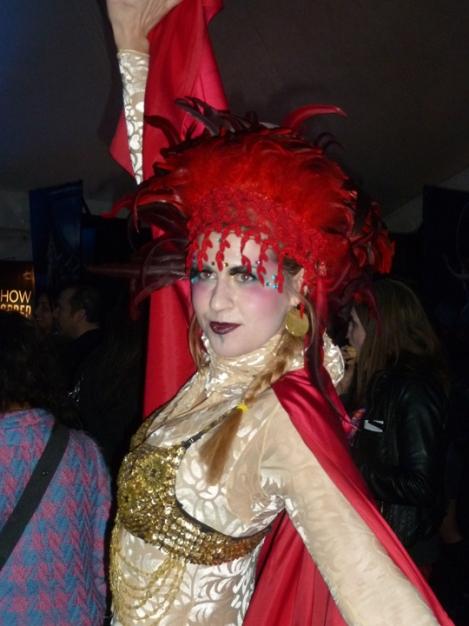 Cirque du Soleil, circus acts, Amaluna