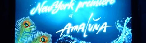 Cirque du Soleil, video screen, Amaluna