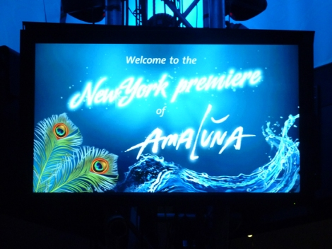 Cirque du Soleil, video screen, Amaluna
