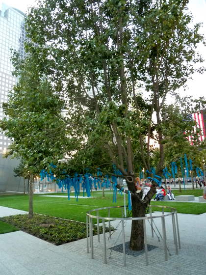 9/11, Memorial Museum, World Trade Center, Michael Arad, Survivor Tree