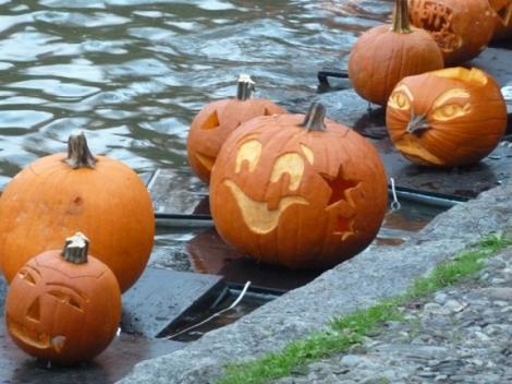 Central Park, Pumpkins, Central Park Conservancy, Halloween, Jack O' Lantern, Pumpkin Flotilla, Kayak, Harlem Meer, Witch