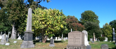 Gay Graves Tour, Green-Wood Cemetery, Brooklyn, Autumn, Fall, Acorns, Blue Sky, Cloudless Sky