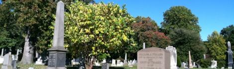 Gay Graves Tour, Green-Wood Cemetery, Brooklyn, Autumn, Fall, Acorns, Blue Sky, Cloudless Sky