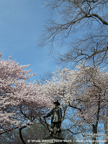 Central Park, John Quincy Adams Ward, Central Park Walking Tour, New York, Cherry Trees, Bronze, Granite, Richard Morris Hunt, Spring, Flowers, Walk About New York, Pilgrim, Puritan, New England Society, 1885